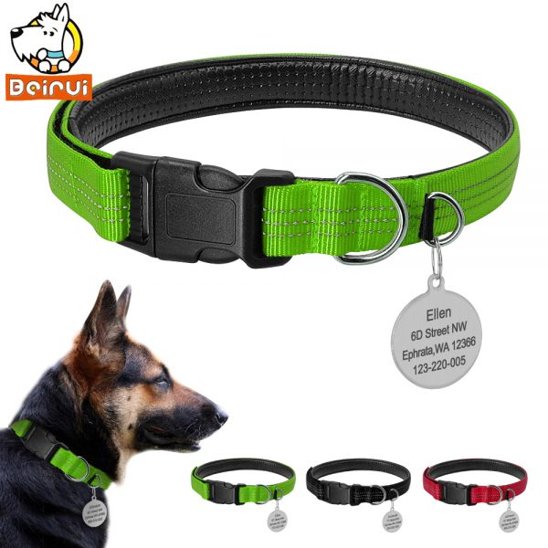 personalized nylon reflective dog tag collar set doggy dog dawg