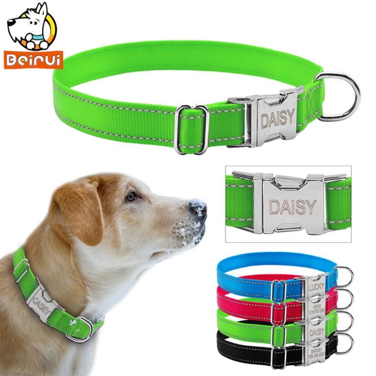 reflective engraved dog collar nylon personalized night safe doggy